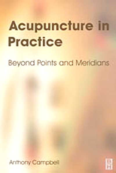 Acupuncture in Practice: Beyond Points & Meridians (View larger image)