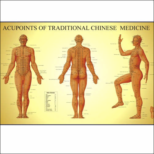 Acupoints of Traditional Chinese Medicine (Chart)  (View larger image)