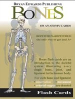 Bones Flash Cards (Special) (View larger image)