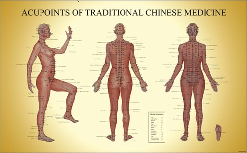 Acupoints of Traditional Chinese Medicine (Chart)  (Acupoints of Traditional Chinese Medicine (Chart) Female)