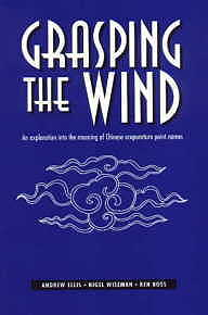 Grasping the Wind: An Exploration into the Meaning (View larger image)